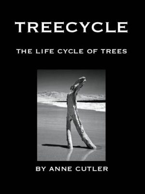 20071211162506_geck_11_treecycle